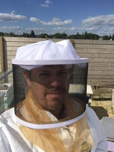 bees1